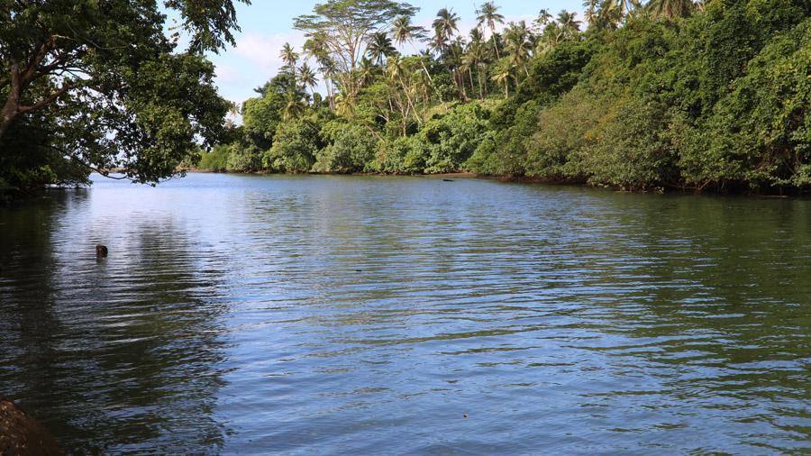 Samoa 186