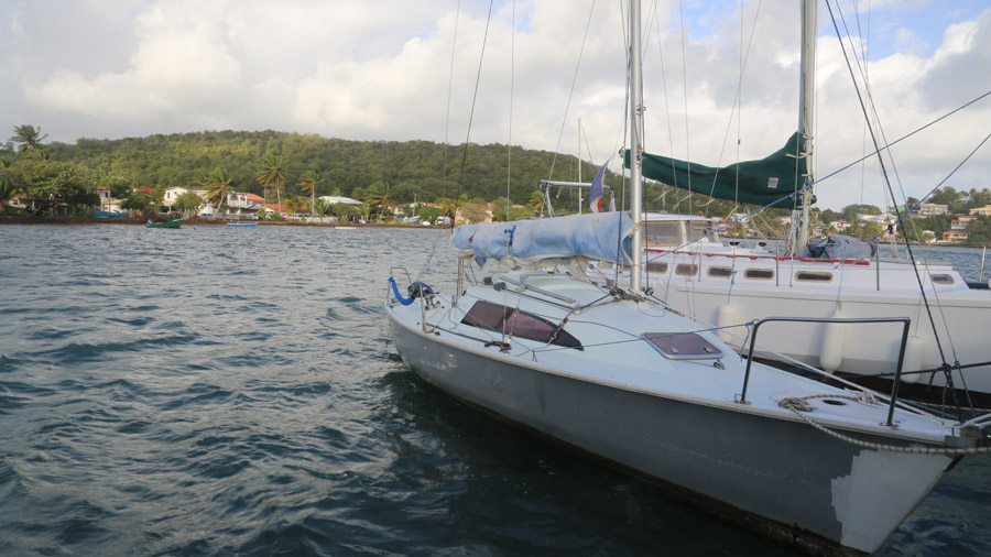 Martinique 221