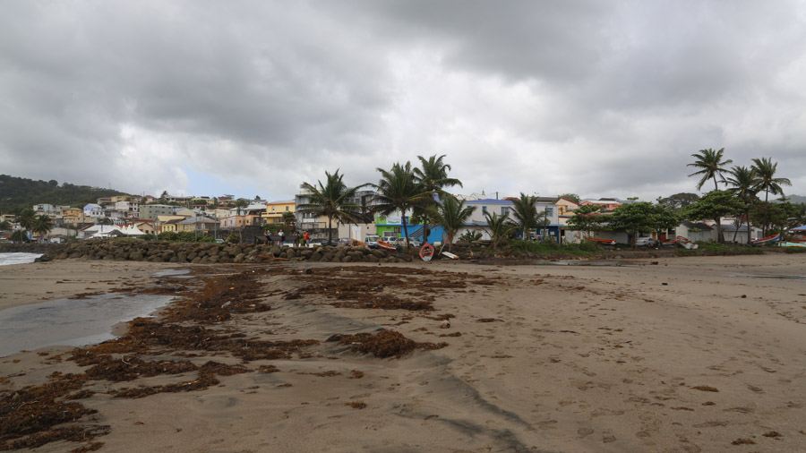 Martinique 316