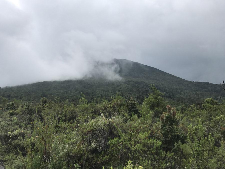Congo 568