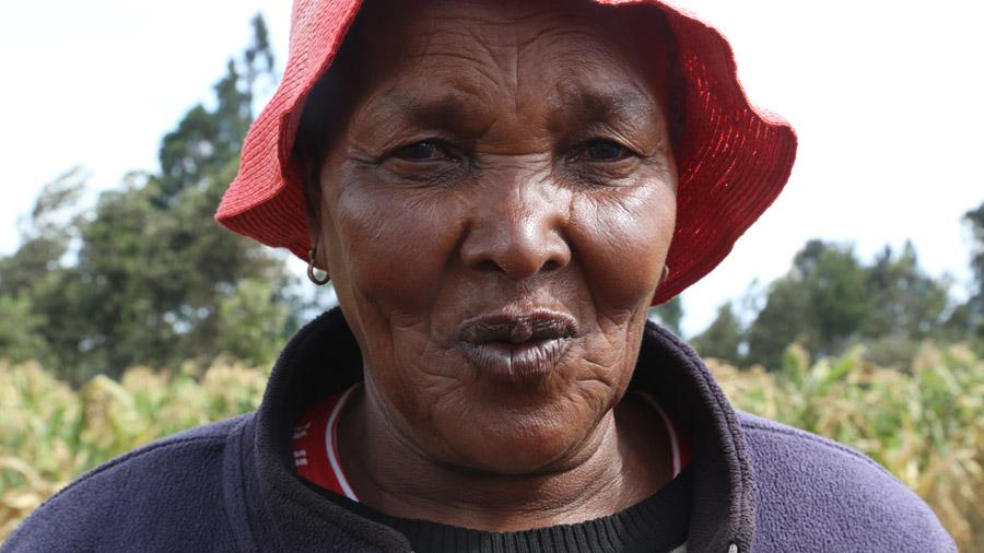 Kenya 319