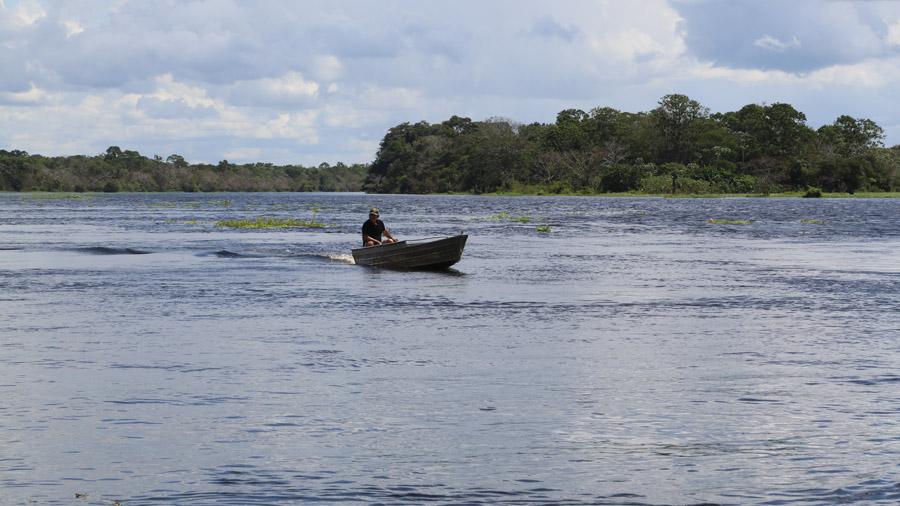 Bresil Amazone