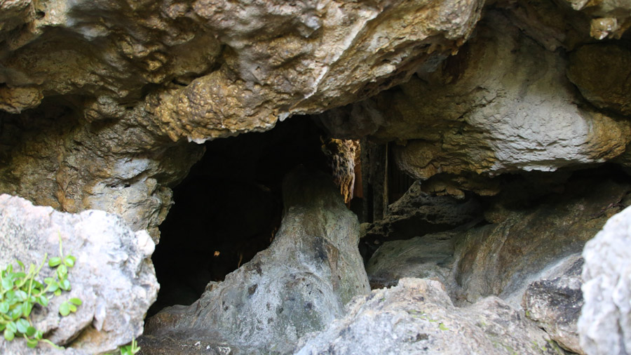 Niue 130