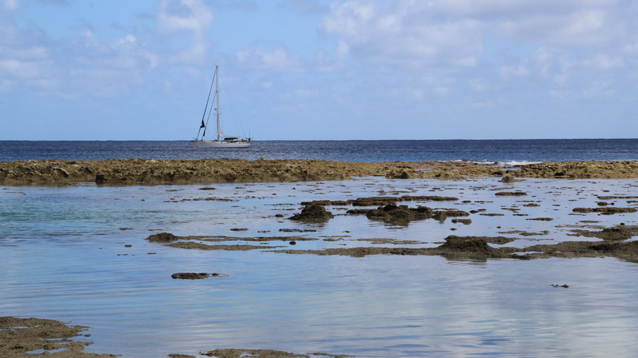 Niue 502