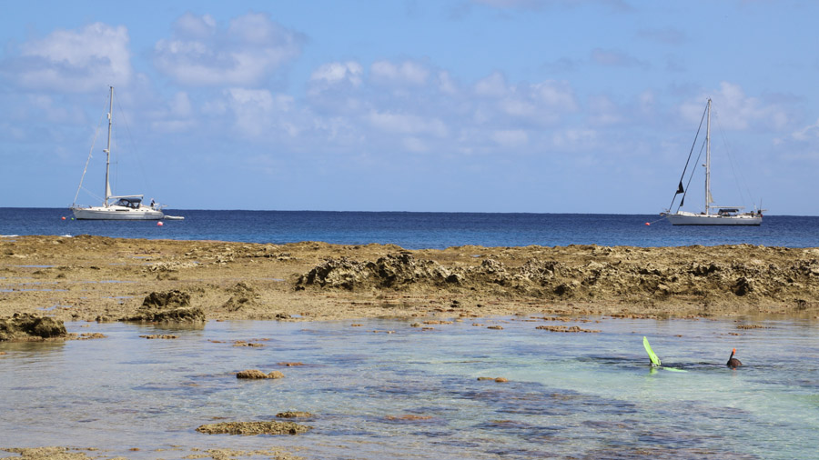 Niue 506