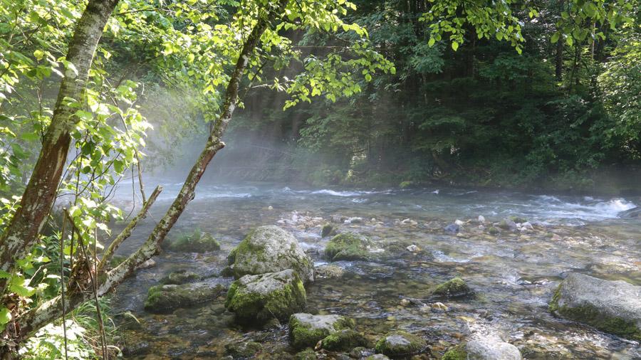 Slovenie Gorges de Vintgar