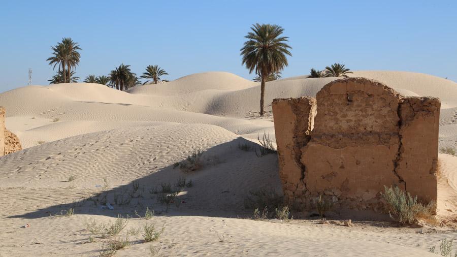296 Tunisie Sud