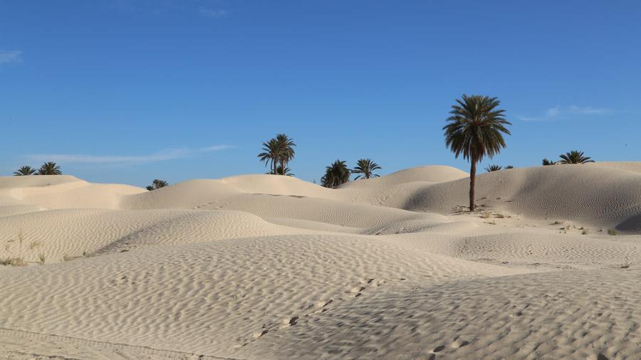 297 Tunisie Sud