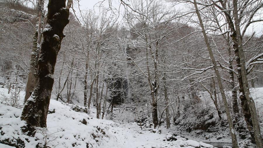 750 France Cantal