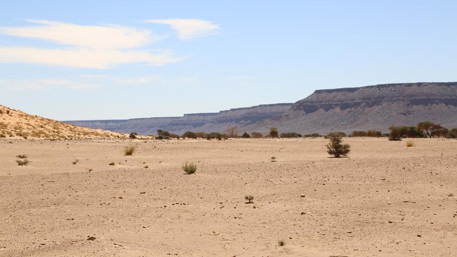 465 Mauritanie