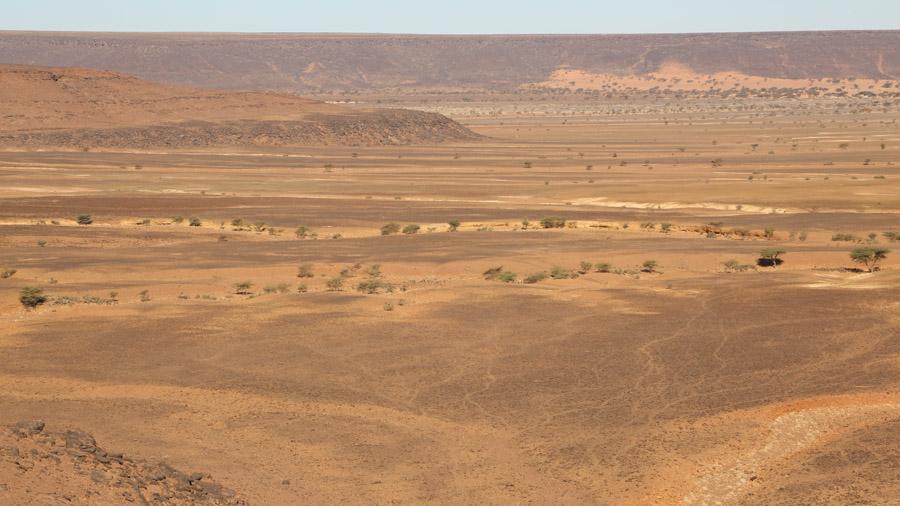 603 Mauritanie