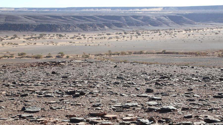 605 Mauritanie