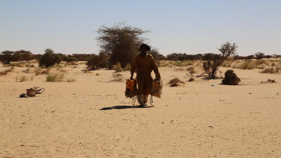 703 Mauritanie