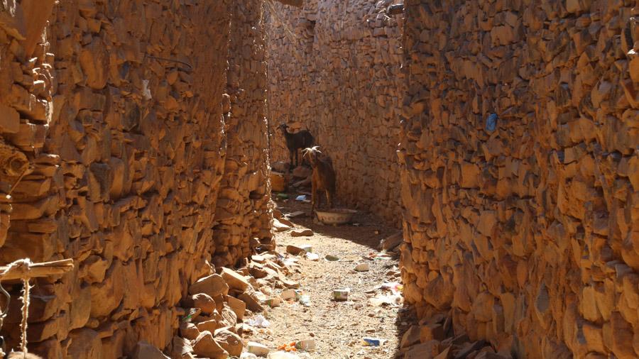 809 Mauritanie