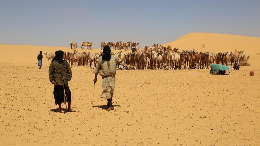 866 Mauritanie