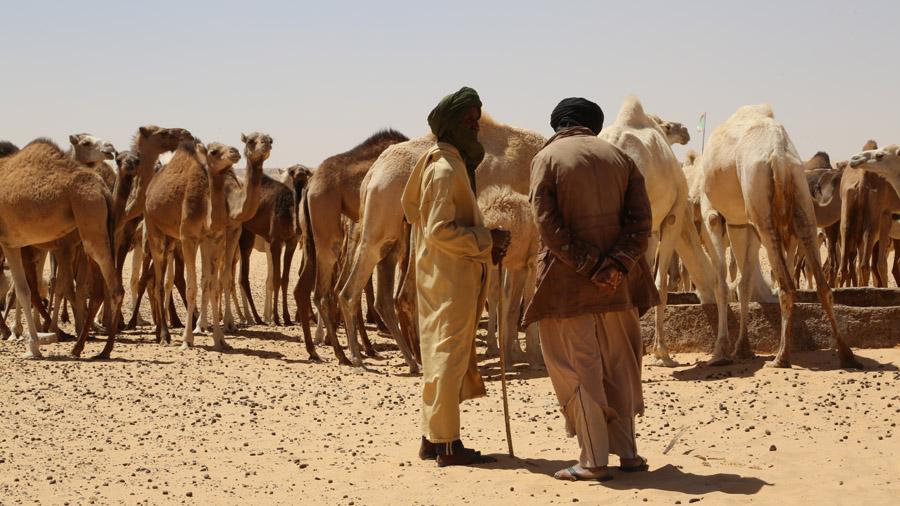 Mauritanie Eleveurs