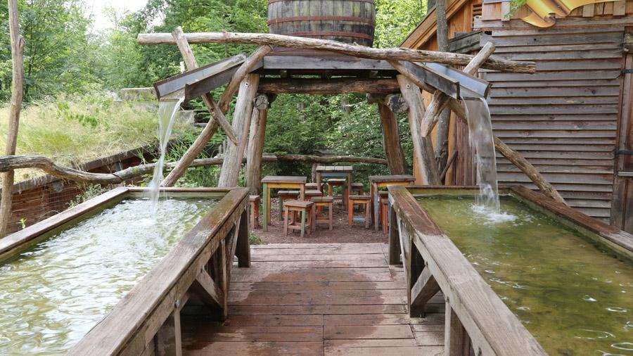117 France Parc Sainte-Croix
