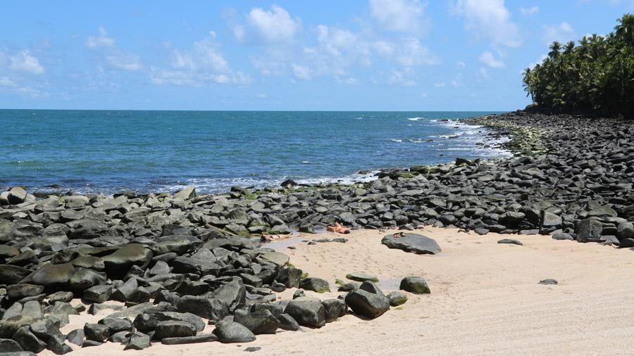 1036 France Guyane française