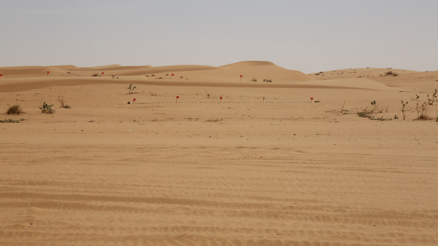 297 Mauritanie