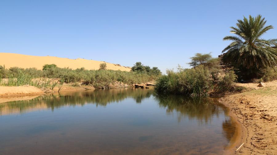 497 Mauritanie