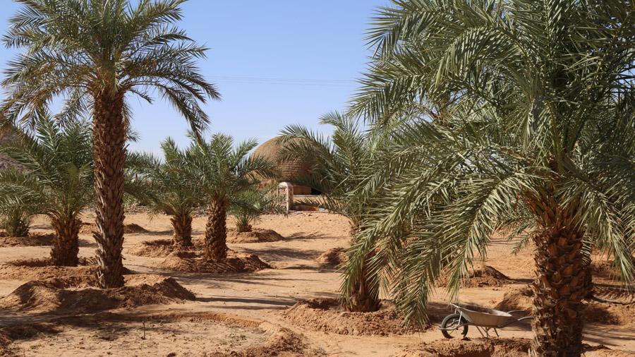 618 Mauritanie