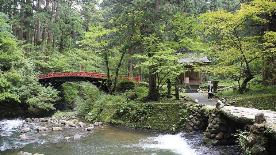 794 Japon Nord