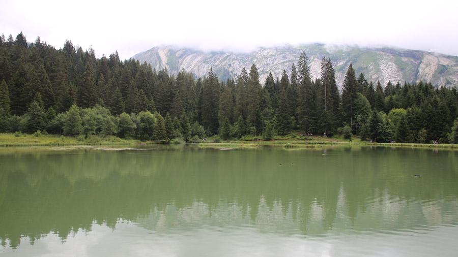 315 France Haute Savoie Morzine