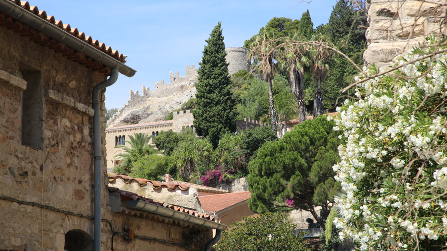 526 France Cote d'Azur Var Hyeres