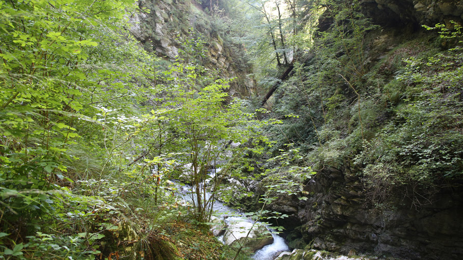 619 France Haute Savoie Morzine