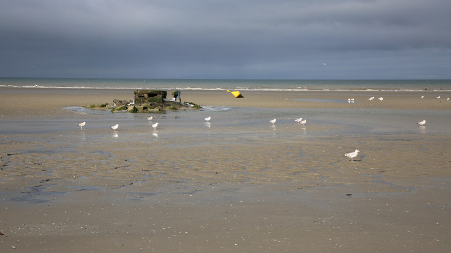 206 France Somme Baie de Somme