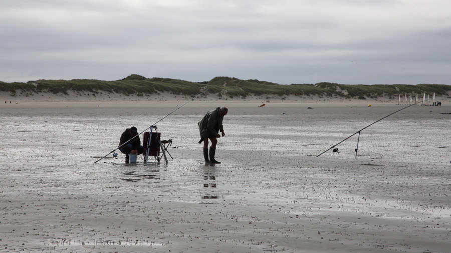 218 France Somme Baie de Somme