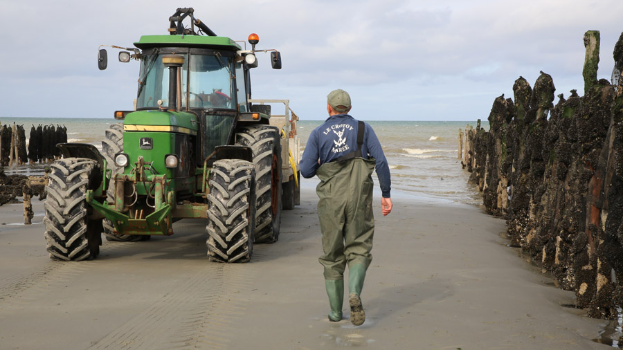 227 France Somme Baie de Somme