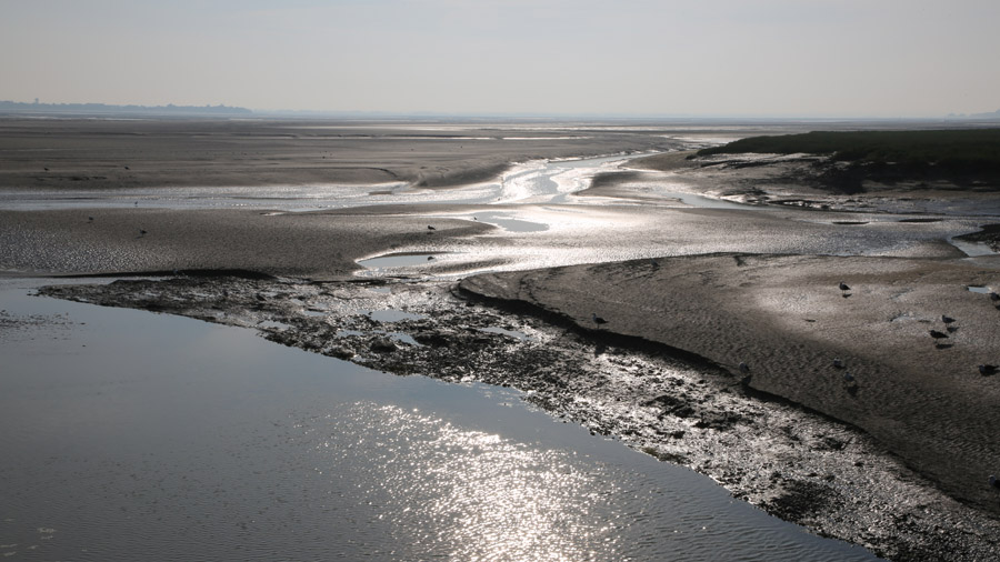 53 France Somme Baie de Somme